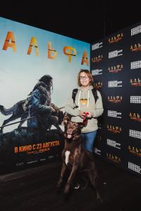 premiere alpha 013
